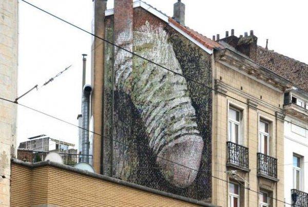 Брюссельские власти ищут шутника, нарисовавшего  гигантский пенис на стене дома.