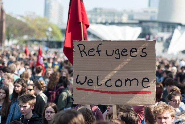 «Каждый пятый беженец новой волны,  не умеет читать и  писать»,  – доклад главы социальной службы.