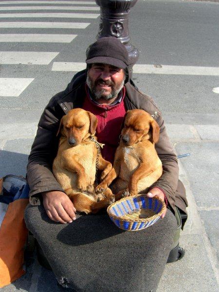 В Брюсселе, Генте и Антверпене открылись  зимние ночлежки для бездомных.